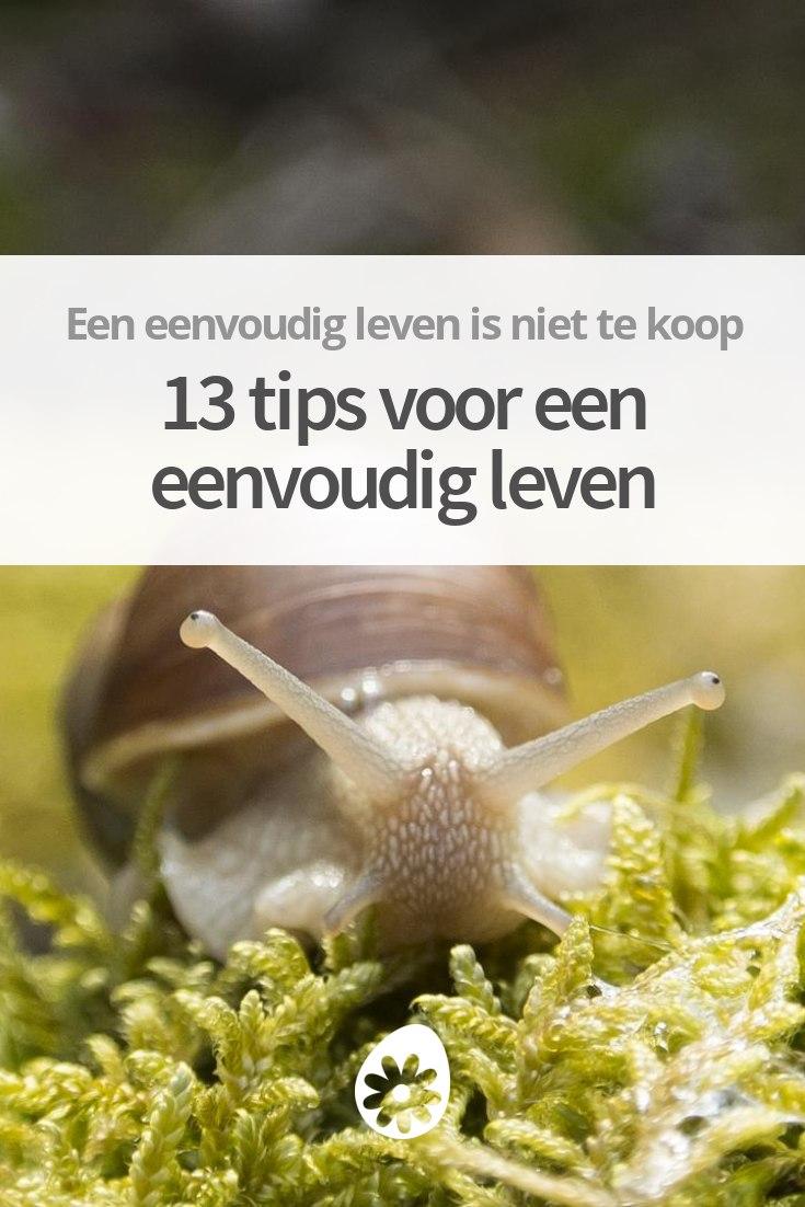 Eenvoudig leven tips 13 tips voor een eenvoudig leven for Eenvoudig leven