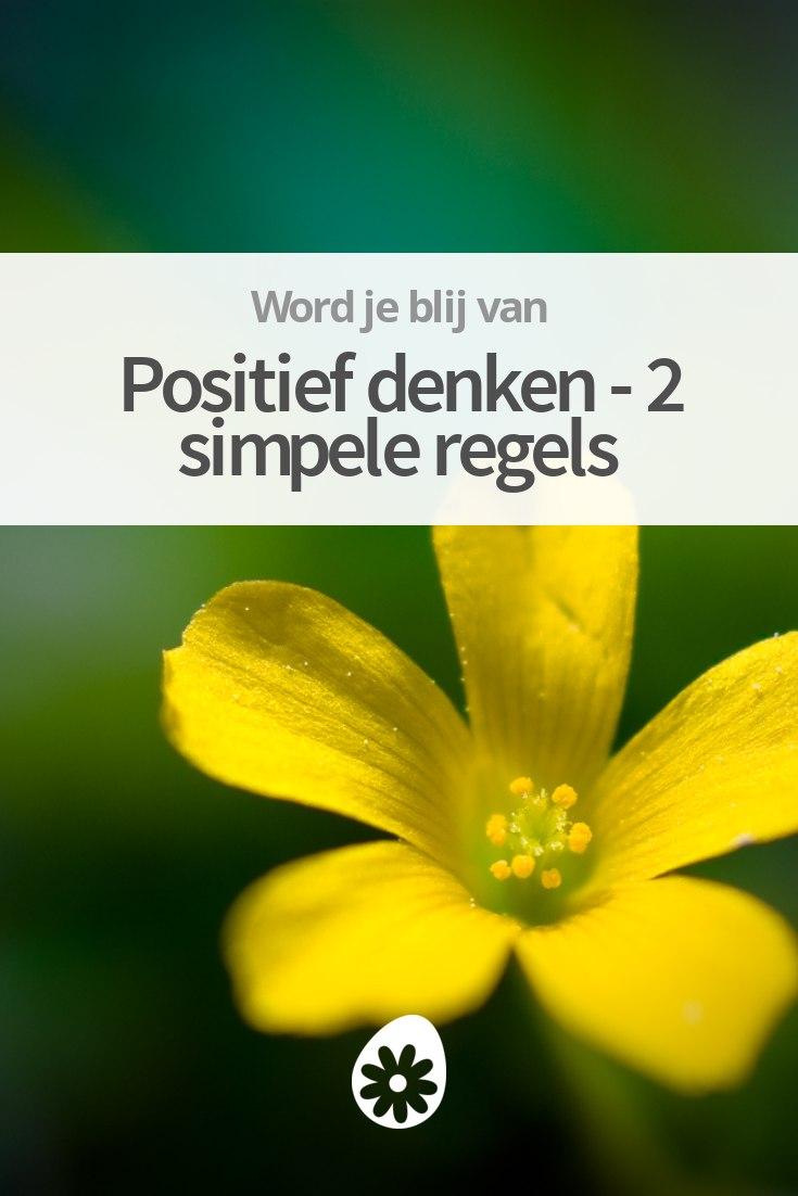 Populair Positief denken - 2 simpele regels | soChicken XG63