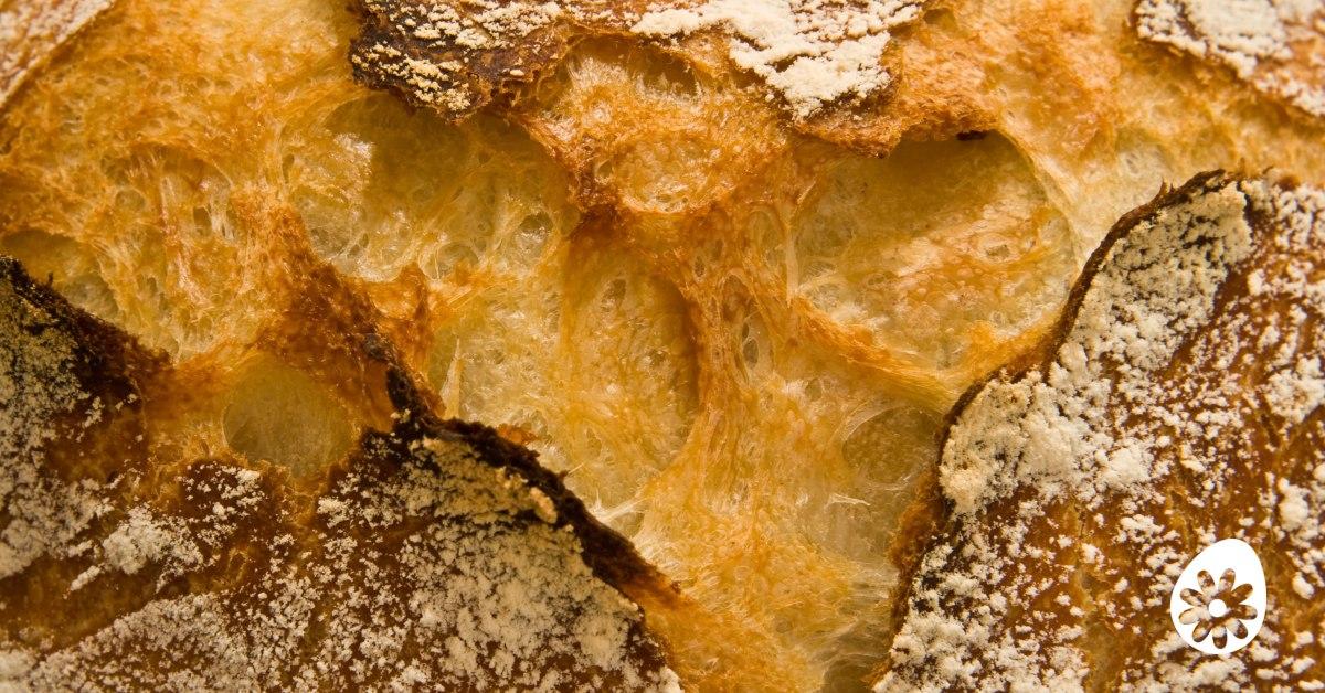 brood afvallen