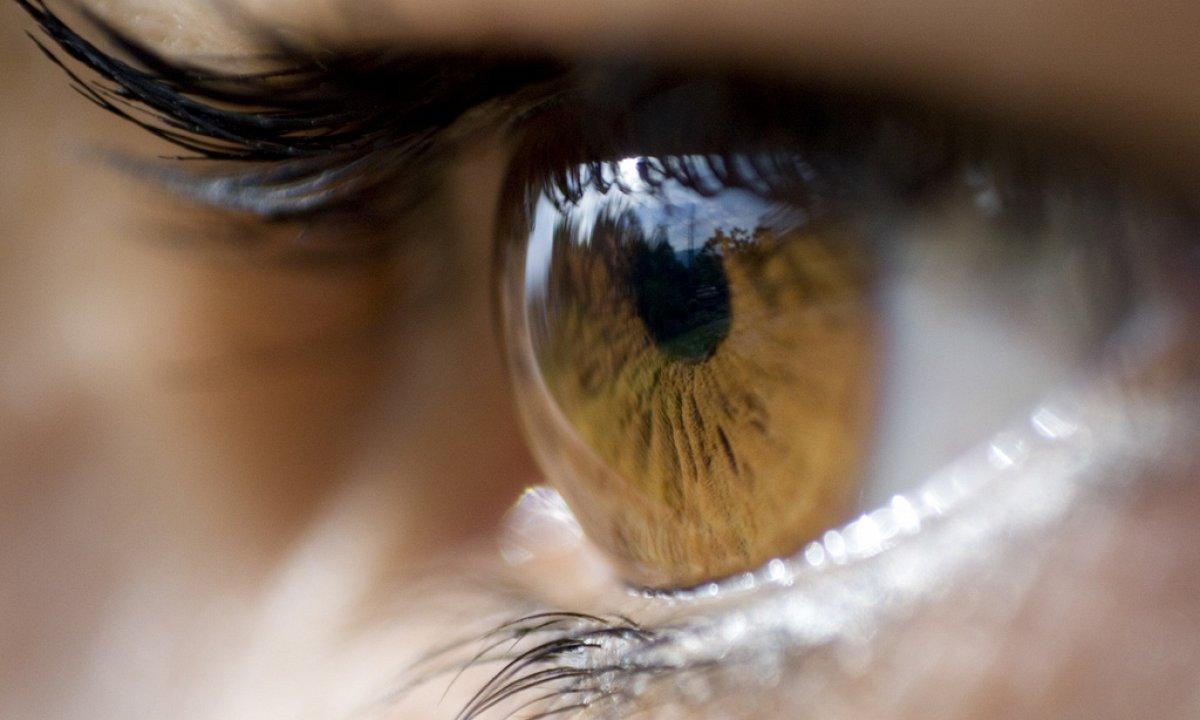 ooglid trilt de hele tijd