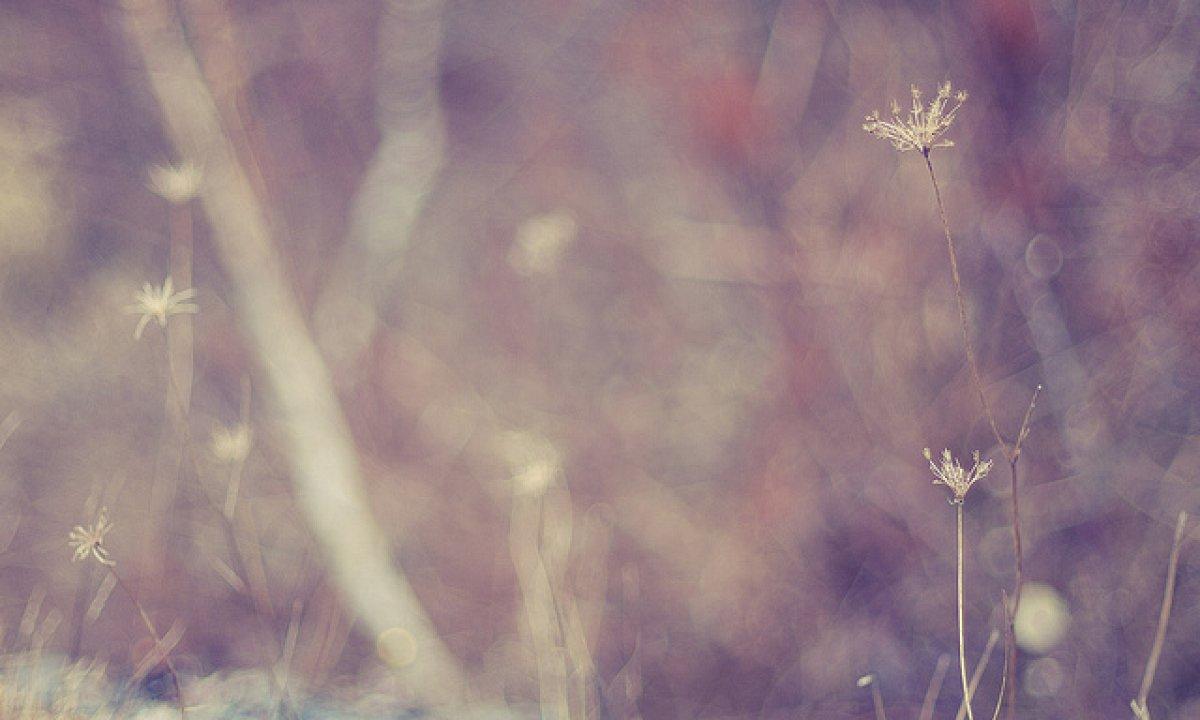 ecca3137e0e Liefde of Angst: De Keuze die je Leven Verandert | soChicken