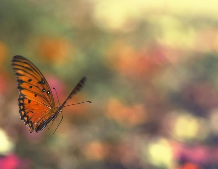 De schoonheid van geduld: 15 inzichten