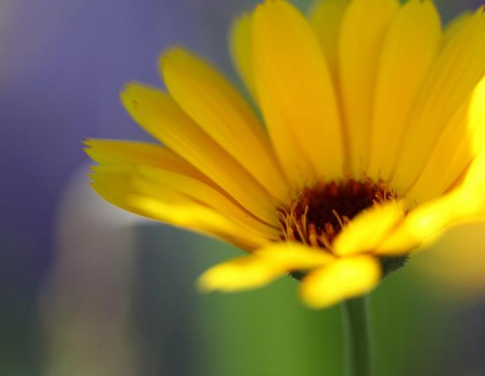 Kwaliteit van je leven verhogen - 4 manieren