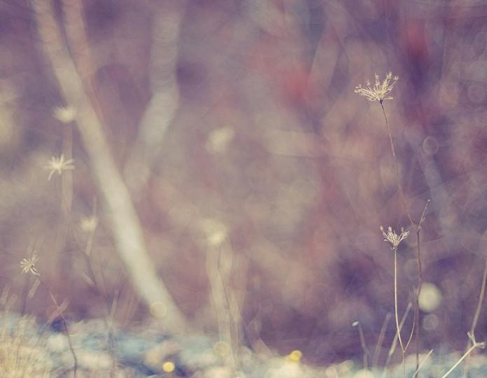 Liefde of angst: de keuze die je leven verandert