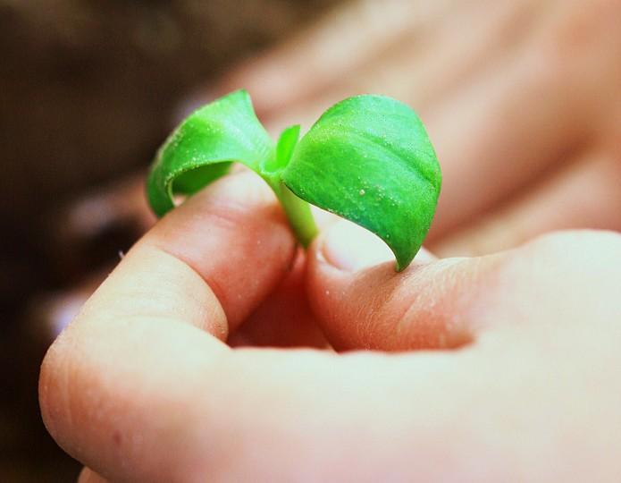 Vergroot je positieve invloed