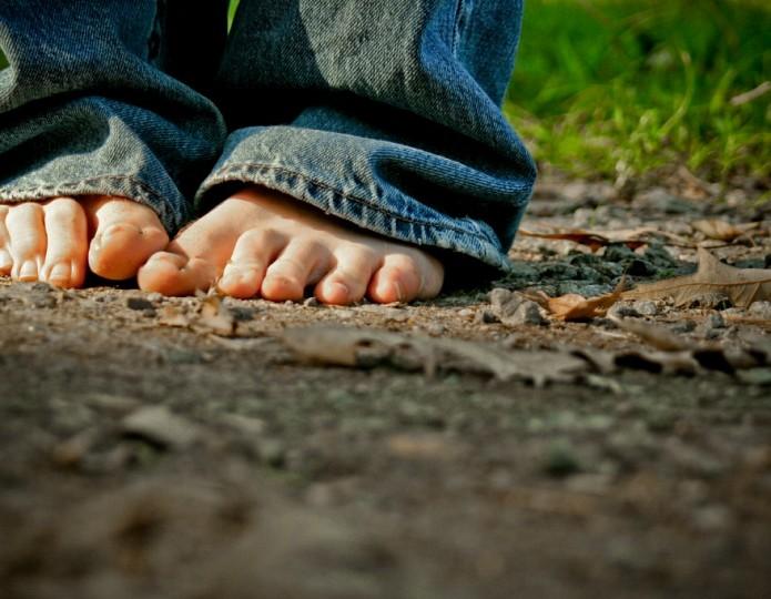 Grote stappen, snel groen - 15 tips om veel duurzamer te leven
