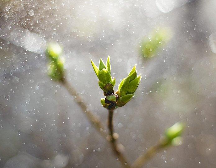 Persoonlijke groei - je groeit ook als je terugvalt
