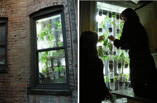 5 Tips Verbouwing : Voedsel verbouwen in kleine ruimtes tips sochicken