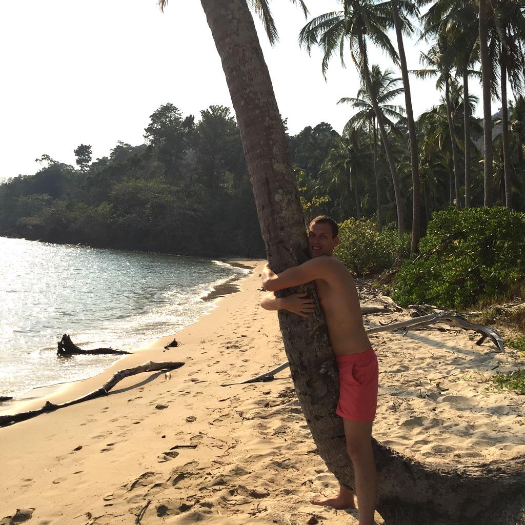 palmboom-knuffelen