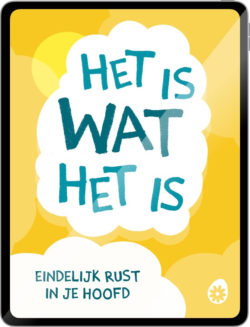 Leven met wind mee - het soChicken boek - door Jelle Hermus